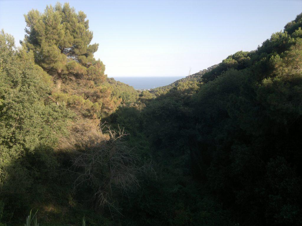 Font Picant, Cabrera de Mar